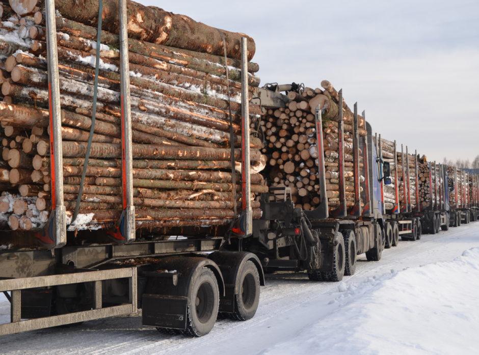 Transport utgjør et betydelig kostnadselement og det er viktig å sikre en mest mulig effektiv framføring av virke fra skogen til sagbruk og industri.