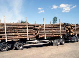 Kjører stadig tyngre tømmerbiler