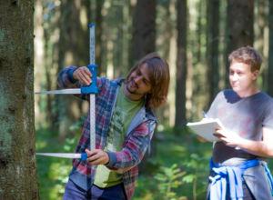 72 studenter ønsker å ta skogfaglig bachelor-utdanning