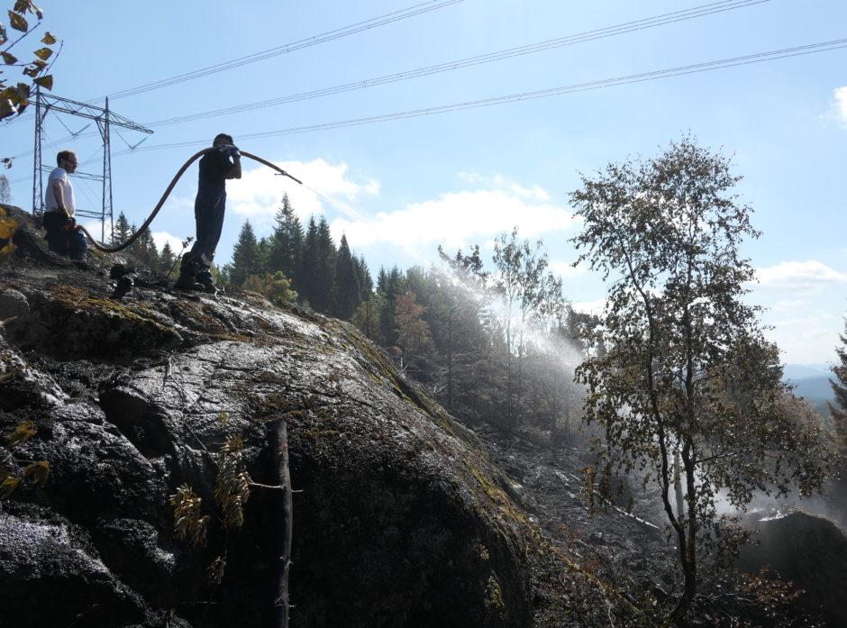 Den ekstreme tørken preger skognæringen i hele Norden. Kun NAV beskriver den som ganske normal.  Her fra Skogbranntroppens etterslukking i Siljan for noen dager siden.