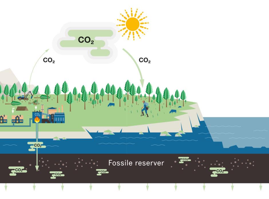 KARBONNEGATIVT KRETSLØP: Skogplanting og bioenergi med karbonfangst og -lagring er to tiltak som bidrar til å fjerne CO2 fra atmosfæren.