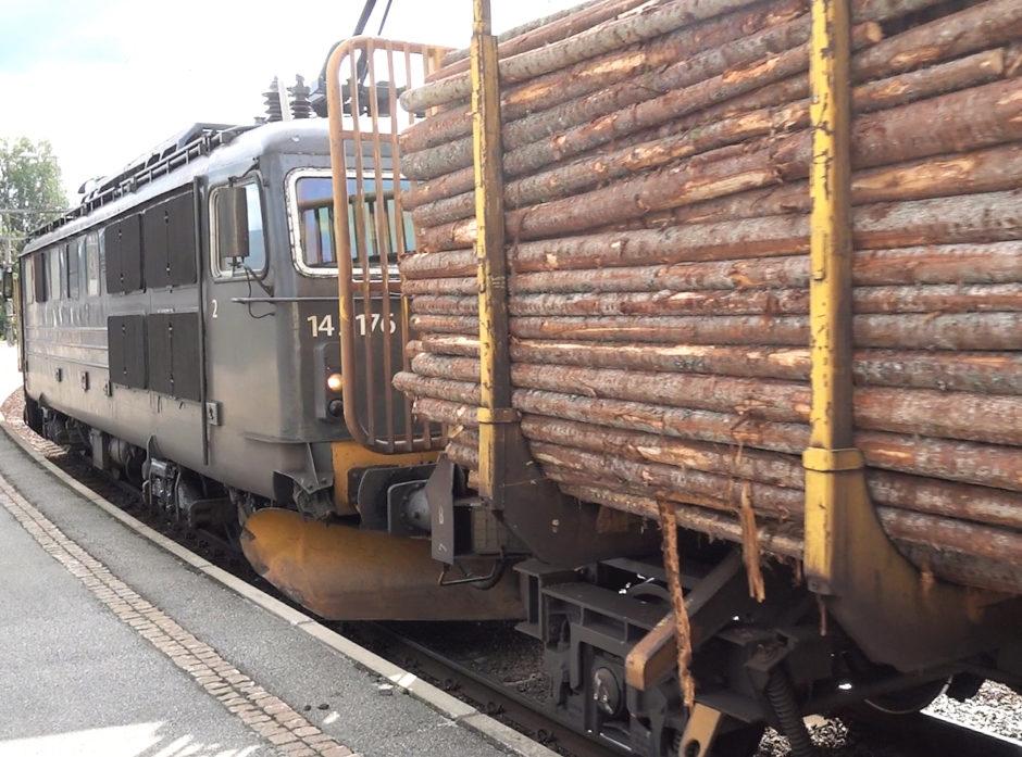 Et fullastet tømmertog på vei til industribedrifter i Østfold.