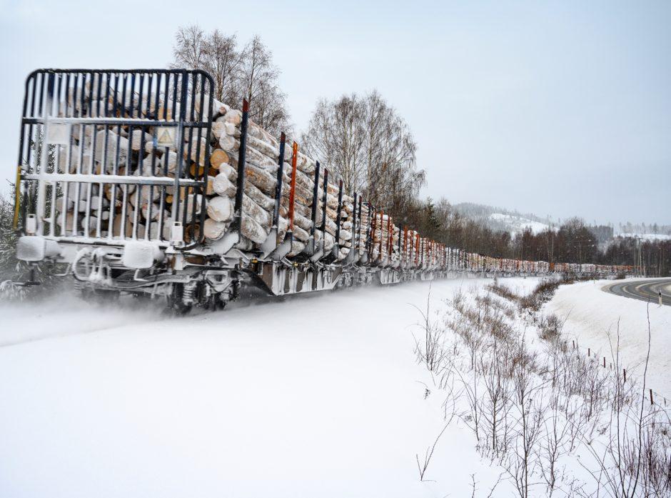 – Jernbanen har vært avgjørende for skognæringa