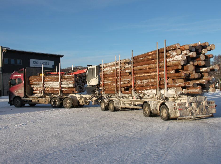Tømmervogntog med 60 tonn totalvekt