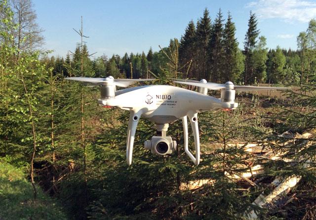 Kontroll av plantefelt ved hjelp av drone