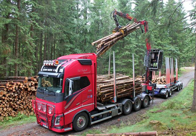Et prøveprosjekt med 74-tonns tømmervogntog i Norge vil bli startet i løpet av året.