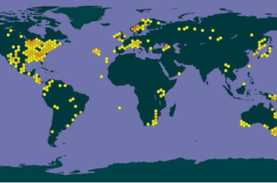 Elfenbenslav, som er foreslått som prioritert art, finnes i store deler av verden. I tropiske strøk er den i følge rødlistevurderingen vanlig og noen steder domminerende innen artsgruppen. Kilde  GBIF