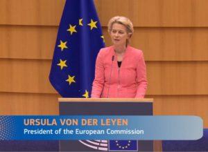 Mer om EUs skogpolitikk