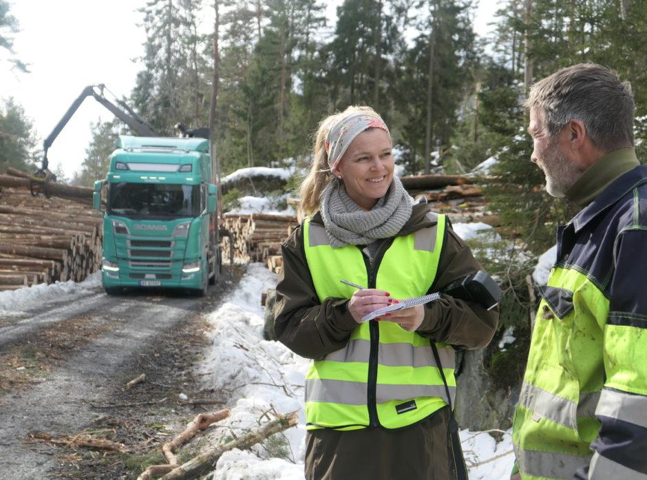 Skogbruket er en grønn fremtidsnæring. Nå søker vi i hel, fast stilling deg som er journalist og vil bli med på laget vårt. Illustrasjonsfoto: Roar Ree Kirkevold